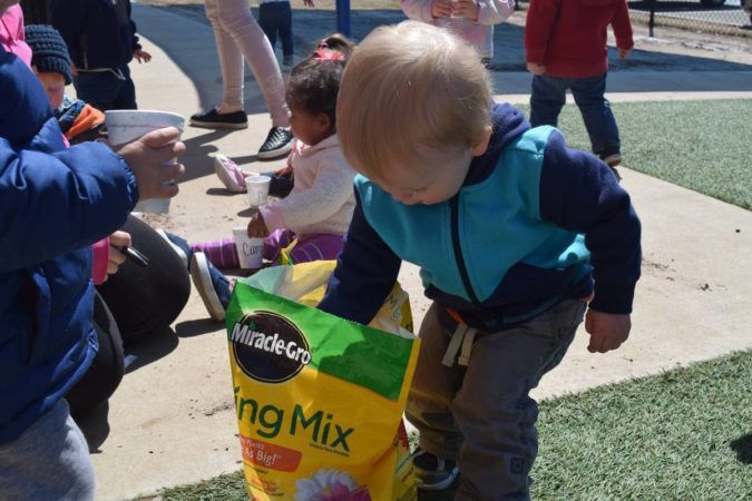 2-year-old_getting_potting_mix_at_cadence_academy_preschool_rogers_ar-675x450