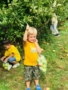 apple_picking_field_trip_creative_kids_childcare_centers_mahopac-338x450