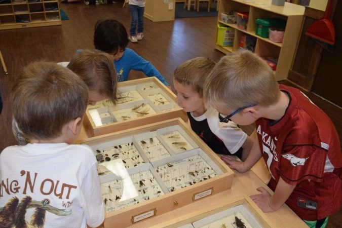 learning_about_insects_at_cadence_academy_preschool_rogers_ar-675x450