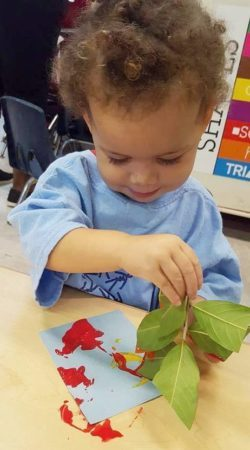 painting_with_a_leaf_cadence_academy_preschool_surfside_myrtle_beach_sc-250x450