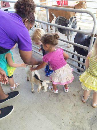 petting_goat_at_petting_zoo_cadence_academy_preschool_surfside_myrtle_beach_sc-338x450