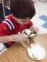 pinecone_art_project_at_next_generation_childrens_centers_sudbury_ma-342x450