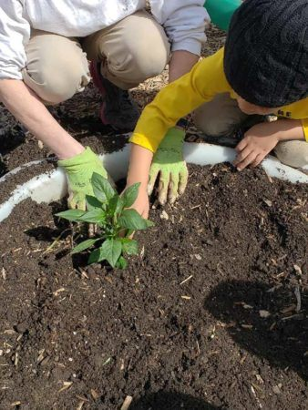 planting_in_the_garden_at_winwood_childrens_center_gainesville_ii_va-338x450