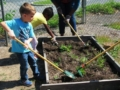 preschool_boy_digging_in_garden_with_shovel_at_cadence_academy_preschool_harbison_columbia_sc-600x450