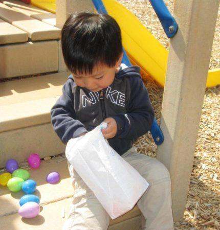 preschool_boy_looking_through_easter_eggs_at_cadence_academy_ballantyne_charlotte_nc-979x1024-430x450