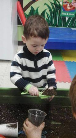 preschool_boy_planting_a_seedling_prime_time_early_learning_centers_edgewater_nj-248x450