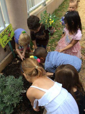 preschool_children_gardening_together_at_cadence_academy_preschool_dallas_tx-336x450