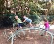 preschool_children_playing_on_dinosaur_playground_equipment_cadence_academy_preschool_mount_pleasant_sc-555x450