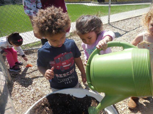 preschool_children_watering_plant_the_phoenix_schools_private_preschool_antelope_ca-600x450