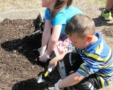 preschool_children_working_in_garden_cadence_academy_preschool_harbison_columbia_sc-567x450