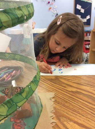 preschool_girl_drawing_butterflies_at_next_generation_childrens_centers_hopkinton_ma-333x450