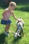 preschool_girl_petting_goat_fredericksburg_childrens_academy_fredericksburg_va-298x450