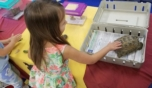 preschool_girl_petting_turtle_winwood_childrens_center_gainesville_ii_va-752x435