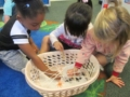 preschool_girls_picking_up_spiders_with_tweezers_winwood_childrens_center_reston_va-600x450
