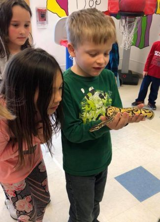 preschoolers_checking_out_snake_learning_edge_childcare_and_preschool_oak_creek_wi-325x450