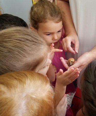 preschoolers_looking_at_hermit_crab_fredericksburg_childrens_academy_fredericksburg_va-374x450