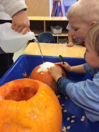 pumpkin_science_activity_at_next_generation_childrens_centers_franklin_ma-336x450