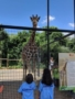 elementary_students_checking_out_giraffe_during_field_trip_winwood_childrens_center_south_riding_va-338x450