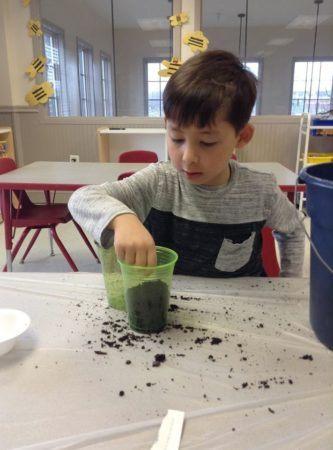 preschool_boy_planting_a_seed_winwood_childrens_center_south_riding_va-333x450