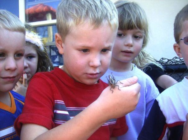 preschoolers_checking_out_bug_winwood_childrens_center_south_riding_va-604x450
